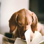 Reading…we all do a lot of it…